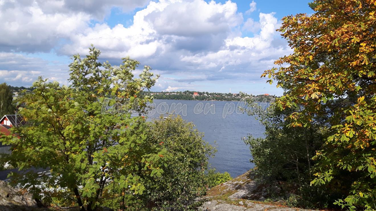 Fjäderholmarna view from the rocks