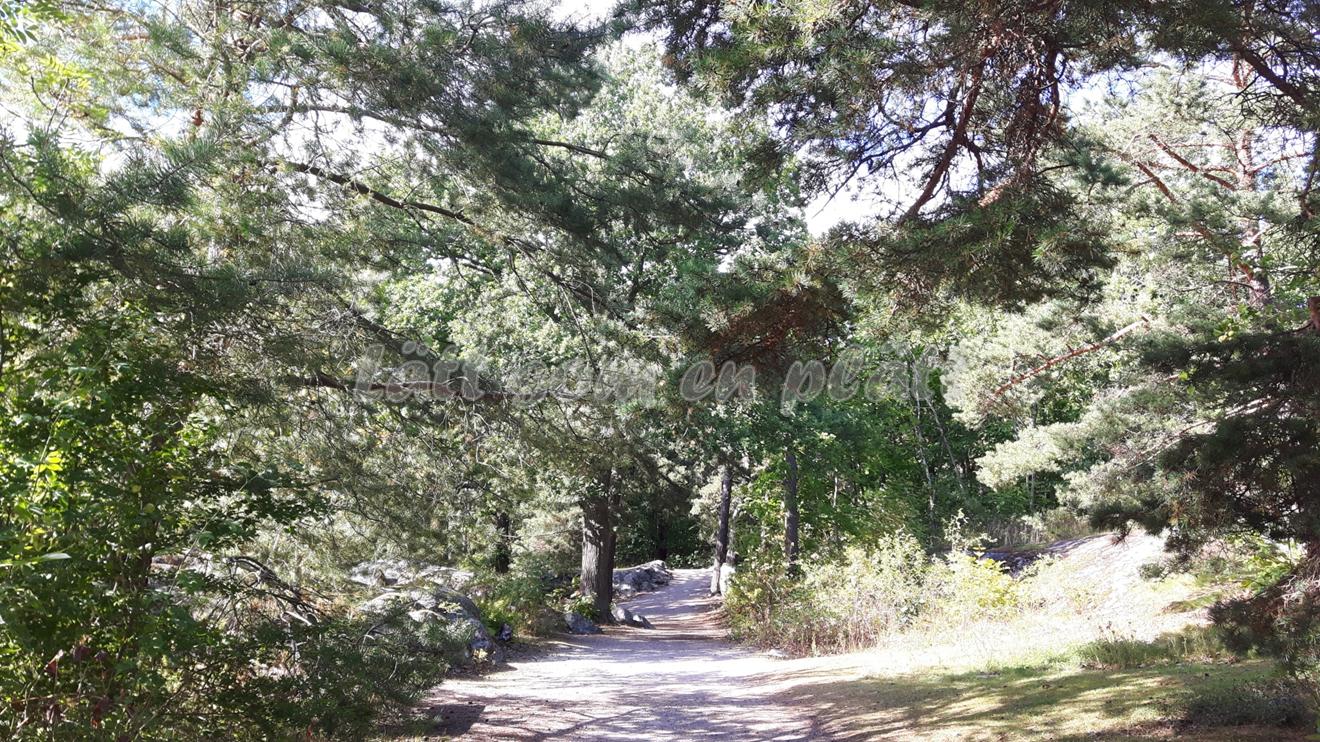Fjäderholmarna walking path